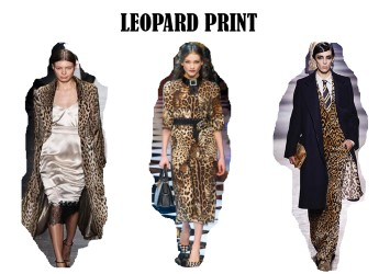thumbnail_leopard-1